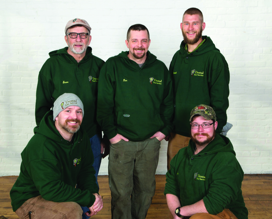Best Tree service - Dostal Tree Service