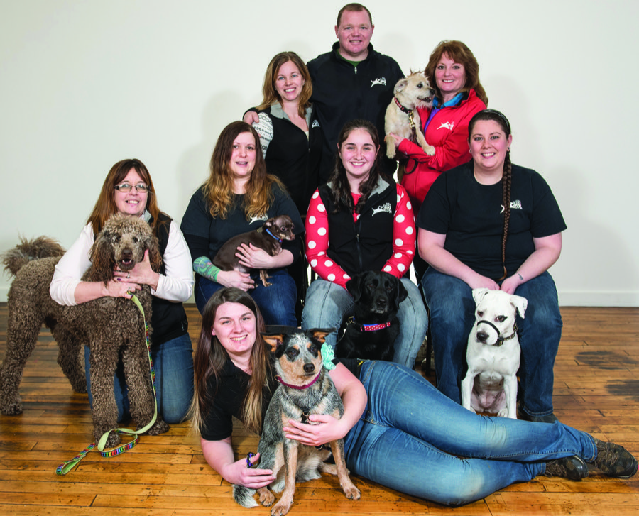 Best Pet day care/boarding - The Good Dog Spot