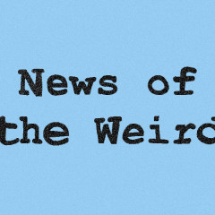 News of the Weird: Work of a Researcher