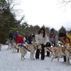 @Work: The Musher, Hilltown Wilderness Adventures