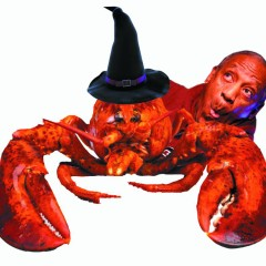 Does Cosby really buy 10,000 lobsters for UMass every Halloween?