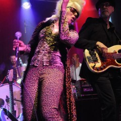 Live Hive: Christine Ohlman's in town