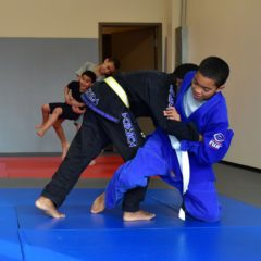 Scene Here: Junior Jiu Jitsu / Warriors in Training