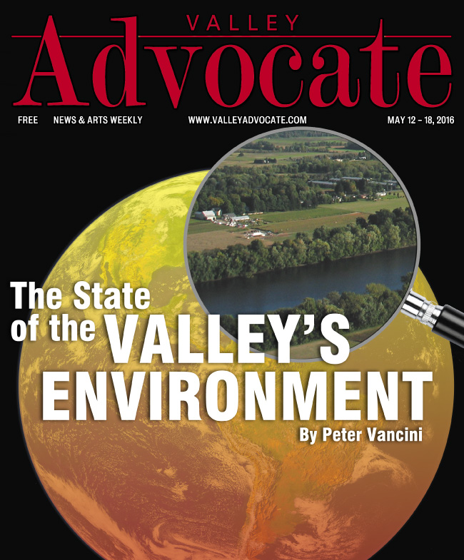 How's the Air (and water, soil, animals, and plants) Down There? The state of the Valley's environment