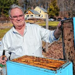 Down to Earth: Saving Honey Bees, One Person at a Time