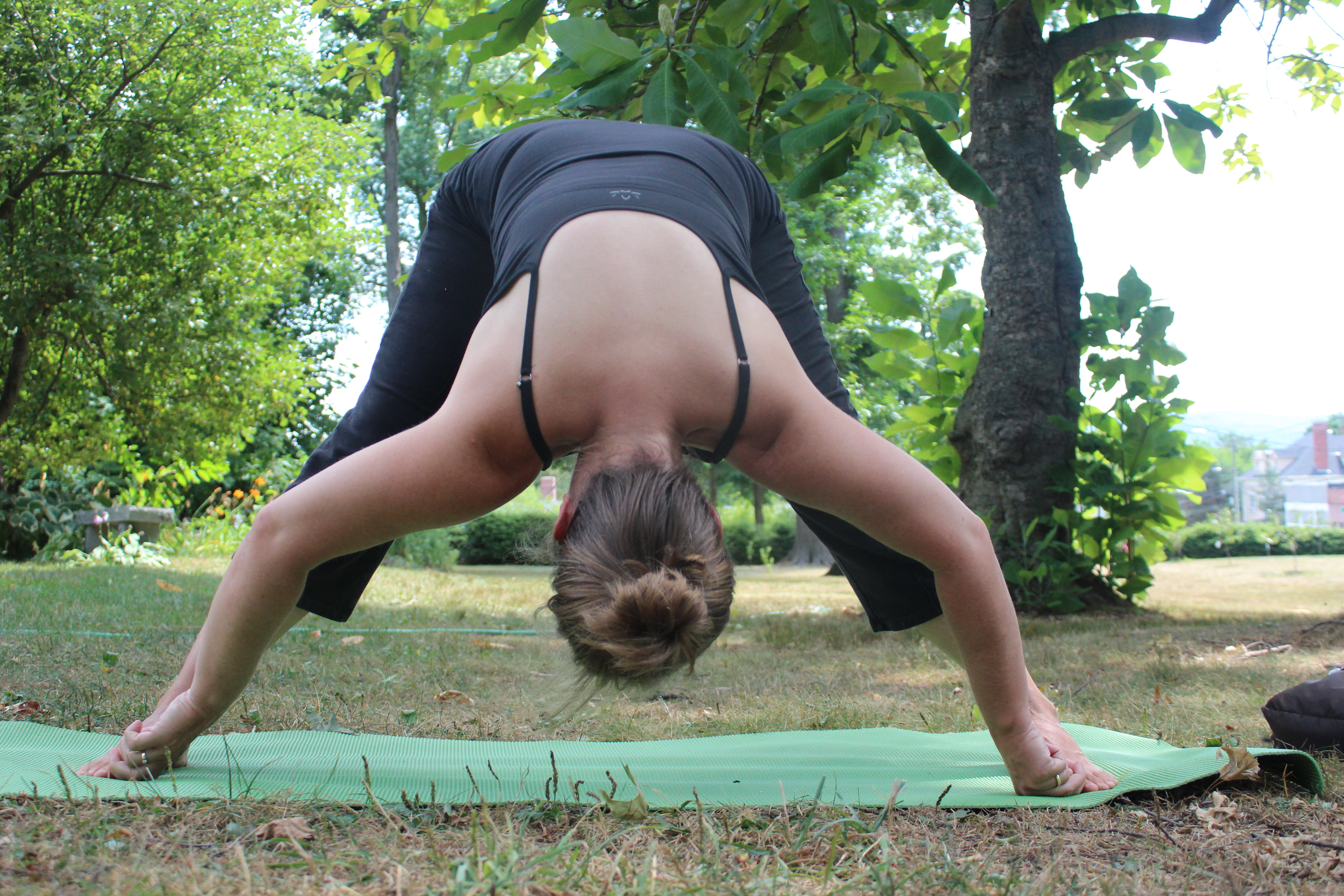 Summer Yoga with Emily Dickinson