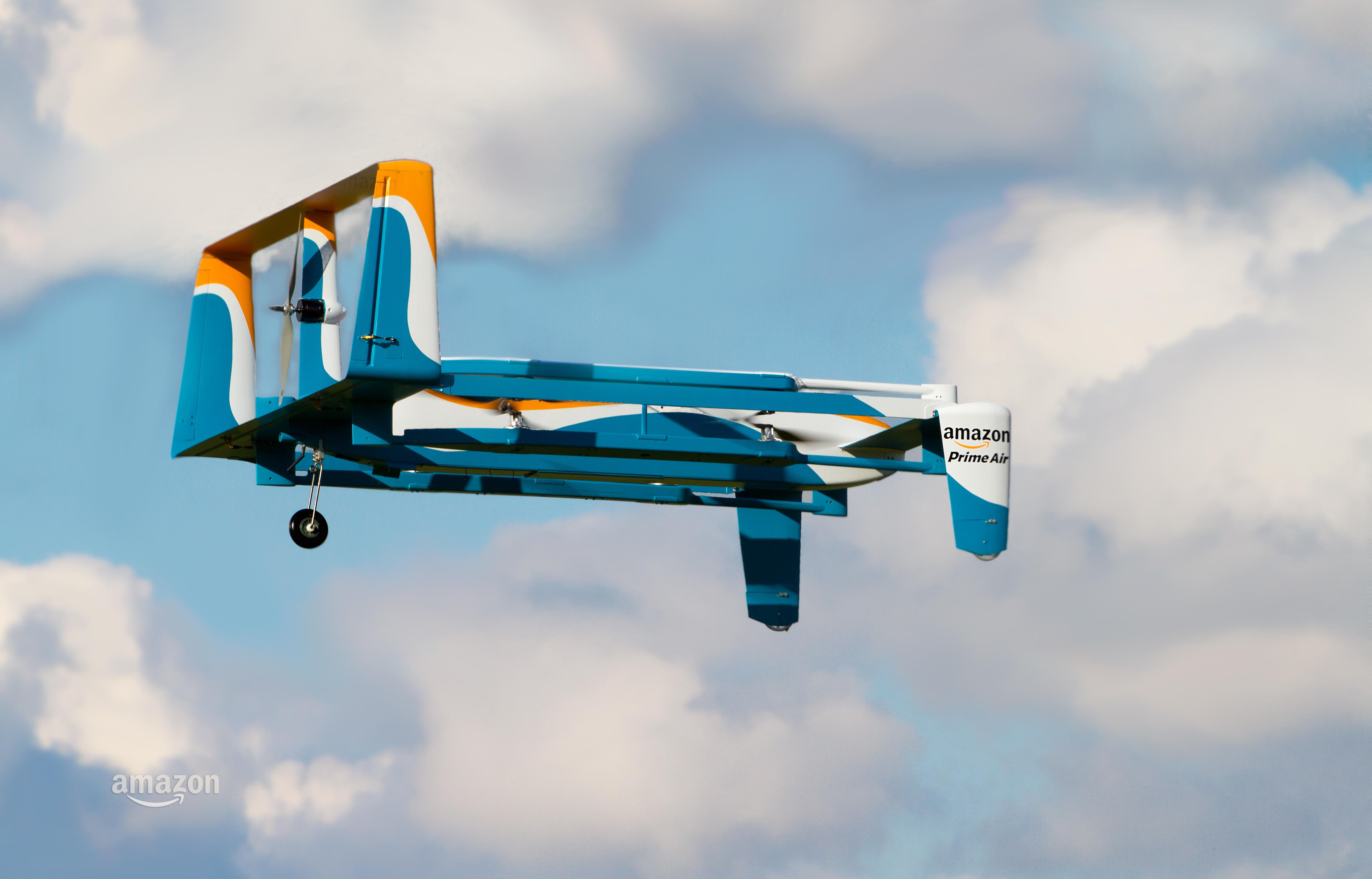 Amazon hybrid