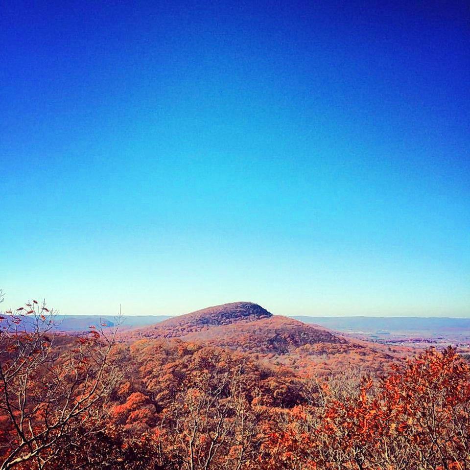 Scene Here: Atop Long Mountain