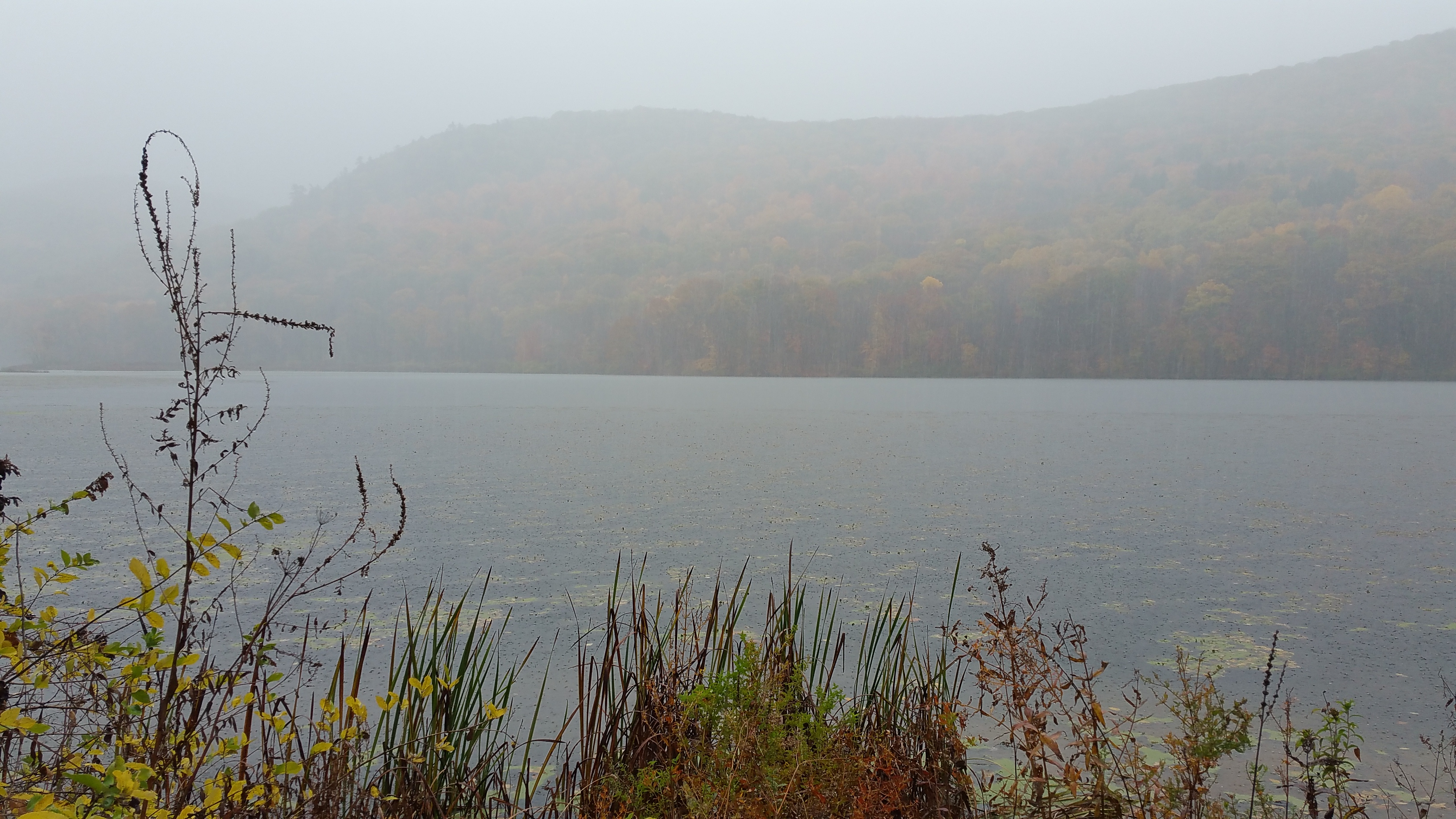 Sweep it Under the River: Berkshire County's Battle with GE Over the Housatonic River Cleanup Continues