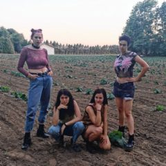 Basemental: House Shows by Deadbeat Club and Boy Harsher