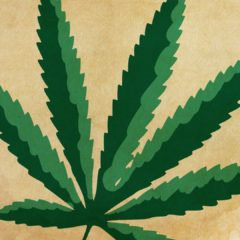 Don't Light Up Yet: Recreational marijuana in Massachusetts is going to roll out slowly
