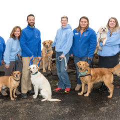 Best Local non-profit 2017 – Dakin Humane Society