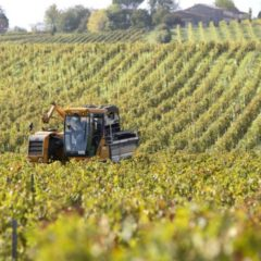 The Pour Man: Transitional Weather Needs a Transitional Wine
