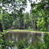 Poem: A Sunny Reunion in Look Park