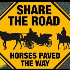 Share The Road — With A Horse