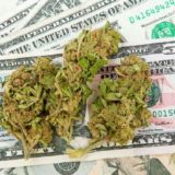 O Cannabis!: Mass. Politicians Want to Charge How Much For An Eighth?