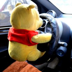 Bizarro Briefs: Bear Takes Joyride Into Mailbox