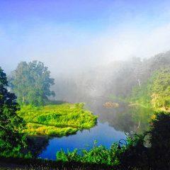 Paradise Pond Poetry