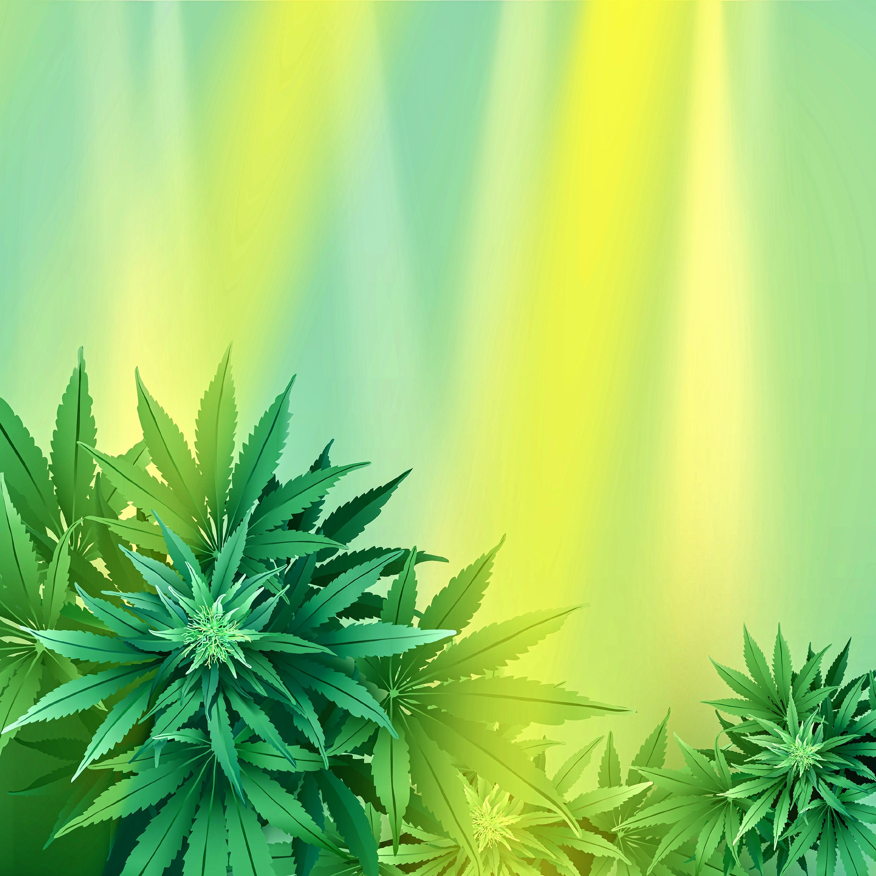 Beyond 420 criminal justice reform and cannabis in mass utter buzz cannabis consumers are celebrating an exciting year for cannabis in massachusetts with the first recreational marijuana licenses already approved fandeluxe Image collections