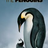 Pick of the Day 2/20: March of the Penguins at the Academy of Music
