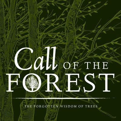 Pick of the Day 2/24: Call of the Forest at Amherst Cinema