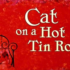 Pick of the Day 5/1: Cat on a Hot Tin Roof
