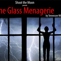 Pick of the Day 5/10: The Glass Menagerie