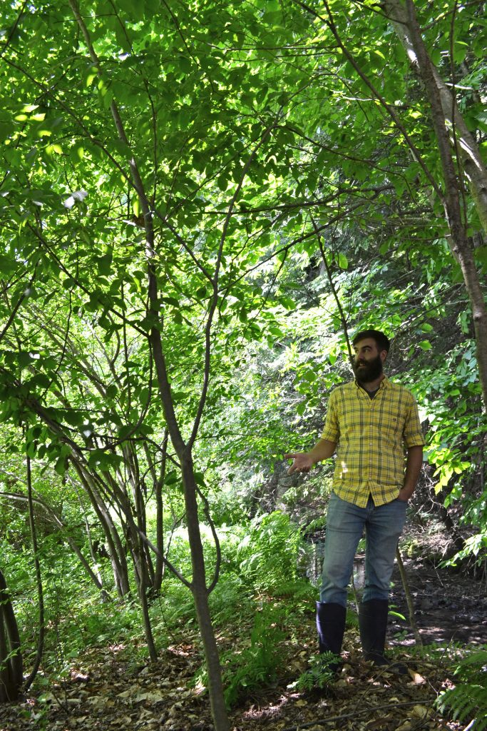 Hermit Thrush brewer Christophe Gagné walks the brewery's new property in Dummerston, VT, just outside of Brattleboro. Hunter Styles photo.