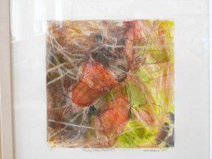 """Hawley Pitcher Plant 4"" by Doris Madsen"
