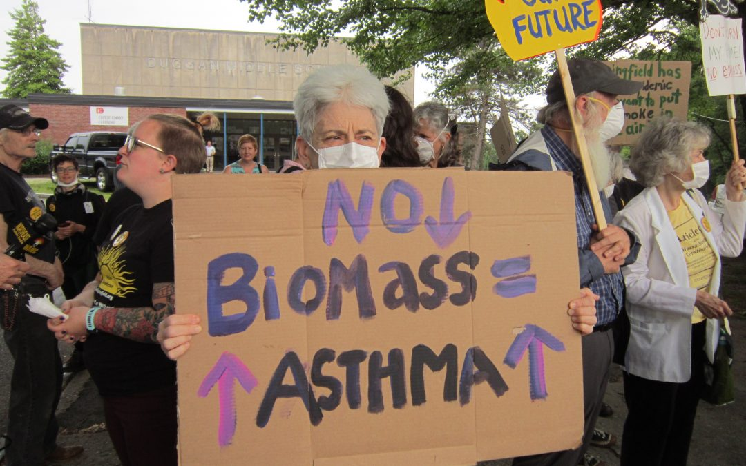 'Biomass Isn't Clean Energy': Springfield activists blast state plan at hearing