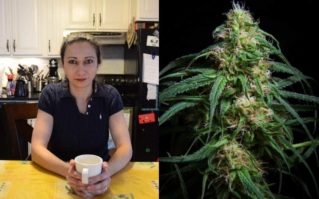 Valley Advocate Podcast: Growing your own cannabis and learning about dosing