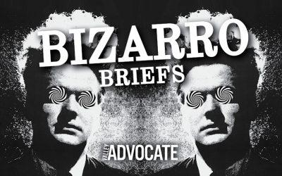 Bizarro Briefs Podcast: Dangerous Cheetos, TP wedding dresses, and animal crises
