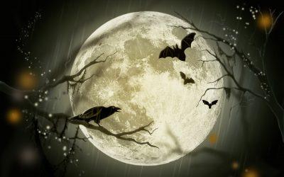 Stagestruck: Halloween & Other Horror Shows