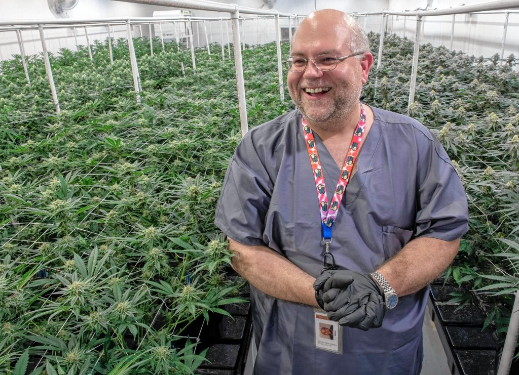 """Greg """"Chemdog"""" Krzanowski, the director of cultivation at Canna Provisions, in a grow room in Sheffield."""
