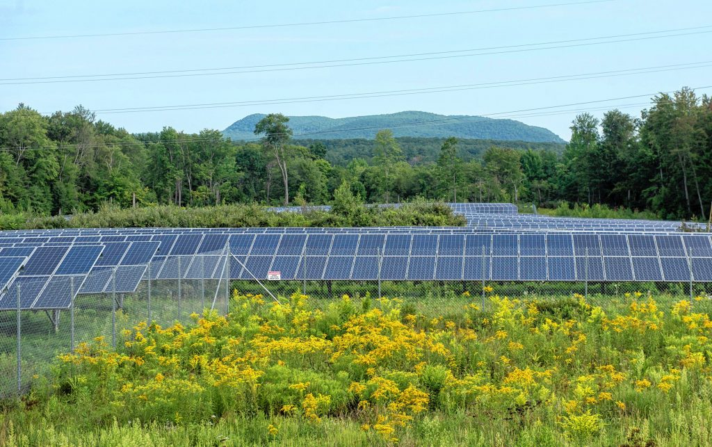 A view looking north, toward Mount Toby, of an approximately 30-acre solar farm north of Pulpit Hill Road in Amherst on Monday, Aug. 16, 2021.