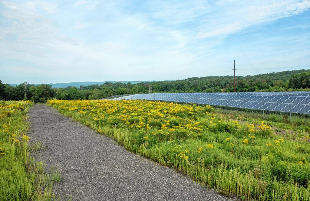 A view looking west over an approximately 30-acre solar farm north of Pulpit Hill Road in Amherst on Monday, Aug. 16, 2021.